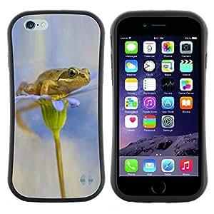 "Pulsar iFace Series Tpu silicona Carcasa Funda Case para Apple (4.7 inches!!!) iPhone 6 / 6S (4.7 INCH) , Flor blanca nieve Anemone"""