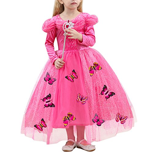 Cinderella Costume Little Big Girl Lace Flower Butterfly