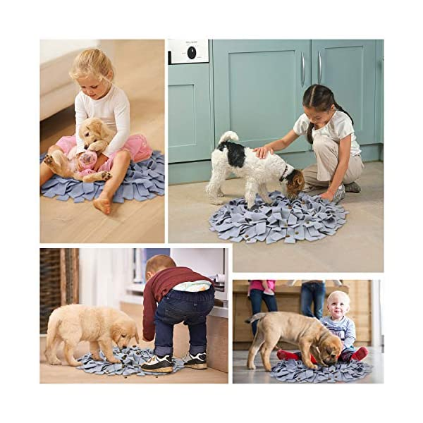 AK KYC Snuffle Mat Dogs Nosework Slow Feeding Training Play Puppy Cat Interactive Puzzle Toys Funny Foldable Blanket 6