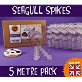 Defender Stainless Steel Seagull Spikes 5 Metre Pack. A Humane Seagull Control Repellent. Get rid of gulls and scare birds with our anti-roosting deterrent