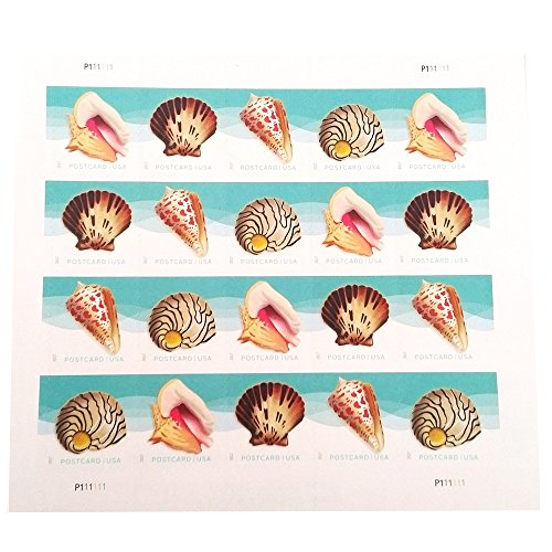 Seashells Postcard Stamp USPS Forever Stamps, Sheet of 20 - US Postage Card Stamps (Sheet of 20 Stamps)