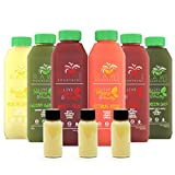 3 Day Juice Cleanse by Raw Fountain Juice - 100% Fresh Natural Organic Raw Vegetable & Fruit Juices - Detox Your Body in a Healthy & Tasty Way! 18 Bottles + 3 Bonus Ginger Shots (3 Day)