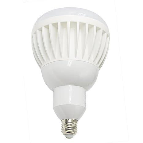Ashialight 300 Watt Equivalent, Outdoor LED Bulb, High Power LED Flood  Light Bulbs, Daylight, Medium Screw Base E26, IP65, Waterproof, 120 volts