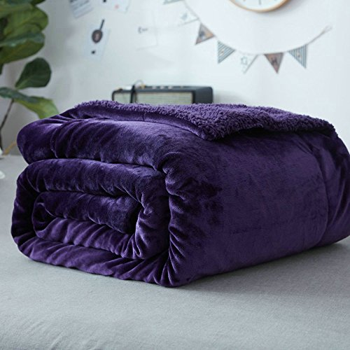 Znzbzt carpet bed for afternoon nap ultra soft girls blankets bed infant blanket newborn students' creative blanket ,100x120cm, Plum Purple