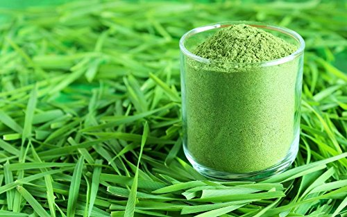 7 Fl Oz Scash Organically Grown Wheatgrass Powder - Raw, Whole Leaf, Vegan, Non GMO & Chemical Free