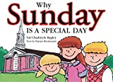 img - for Why Sunday Is a Special Day book / textbook / text book
