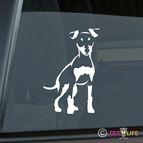 Got Miniature Pinscher Sticker Vinyl Auto Window Min Pin