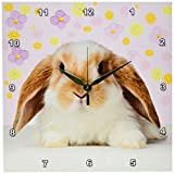 3dRose Rabbit Wall Clock, 10 by 10-Inch For Sale