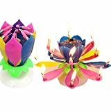 Music Birthday Candle Two Layers with 14 Small Candles Amazing Musical Lotus Flower Rotating Happy Birthday Party Candle Lamp by QWQHI (2, 2 Multi)