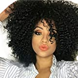 AOSI WIG Curly African American Wigs Hair Heat - Best Reviews Guide