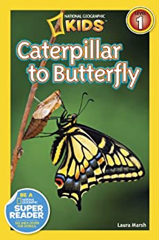 National Geographic Readers: Caterpillar to Butterfly by [Marsh, Laura]