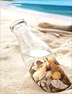 Seashells in a Bottle Boxed Notes - 10 Cards & Envelopes