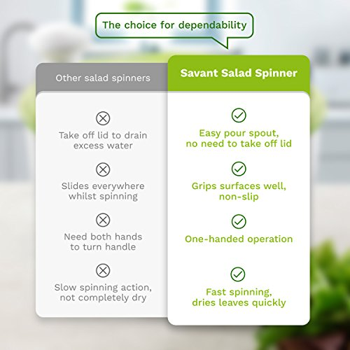 Buy salad spinner on the market