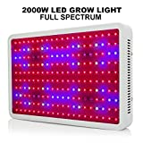 MRJ 2000W(200×10W) Double Chips White LED Grow Light Full Spectrum 410-730nm For Indoor Plants and Flower Very High Yield