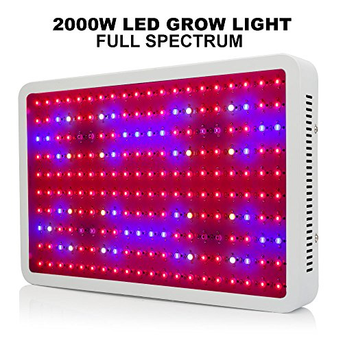 MRJ 2000W(200×10W) Double Chips White LED Grow Light Full Spectrum 410-730nm For Indoor Plants and Flower Very High Yield by MRJ