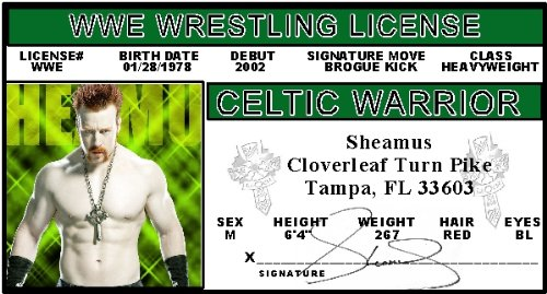 Sheamus - WWE -Collector Card