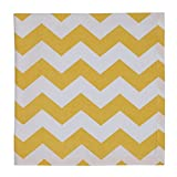 Design Snapdragon Chevron Stripe Napkin, Set of 2