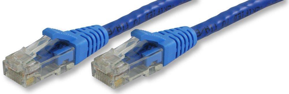 Lynn Electronics cat6 – 10-blb Booted Ethernetパッチケーブル、10フィート、ブルー、2 - Pack   B00PUC89P6