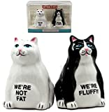 Ebros Feline Black And White Cute Fluffy Cats Salt & Pepper Shakers Ceramic Magnetic Figurine Set 3.25''H