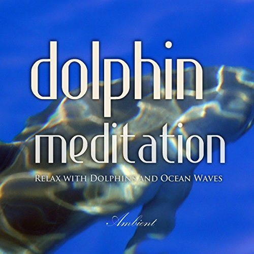 Dolphin Meditation  Relax With Dolphins And Ocean Waves