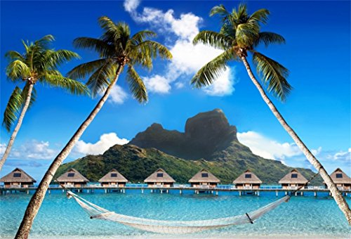 - AOFOTO 5x3ft Beach Palms With Hammock Background Distant Mountain Photography Backdrop Bungalow Dock Ocean Tropical Island Seaside Vacation Summer Holiday Trip Portrait Photo Studio Props Wallpaper