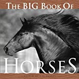The Big Book of Horses, J. C. Suarèz, 1599620138