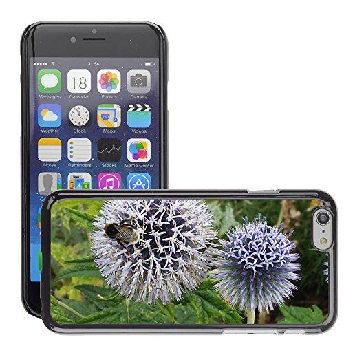 """Just Phone Cases Hard plastica indietro Case Custodie Cover pelle protettiva Per // M00128012 Globe Thistle Abeille Fleur Insecte // Apple iPhone 6 PLUS 5.5"""""""