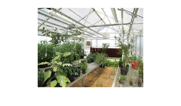 Amazon.com : 30 ft. x 16 ft. Wallace Premium Educational Greenhouse ...