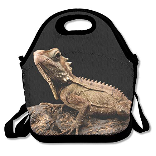 SARA NELL Neoprene Kids Lunch Backpack Lizard Beard Dragon Animal Lunch Tote Bags Lunch Bag Lunch Boxes Handbag with Adjustable Shoulder Strap for Boys Girls Teens