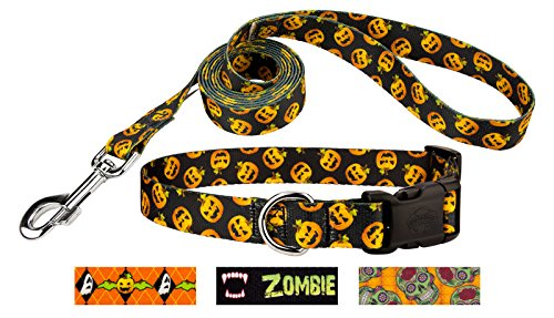 Country Brook Design Happy Jack Deluxe Dog Collar & Leash - Small