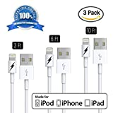 [Apple MFi Certified] [3 FT 6 FT 10 FT] Lightning to USB Charger and Sync Cable for iPhone 6 6Plus 5s 5c 5, iPad Air mini, iPad 4th gen, iPod touch 5th gen, iPod nano 7th gen (White - 1/2/3 Meters) Extremely Durable with Lifetime Guarantee!