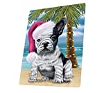 Summertime Happy Holidays Christmas French Bulldogs Dog on Tropical Island Beach Art Portrait Print Woven Throw Sherpa Plush Fleece Blanket (60X80 Woven)