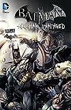 Batman: Arkham Unhinged Vol. 2 (Batman: Arkham City)