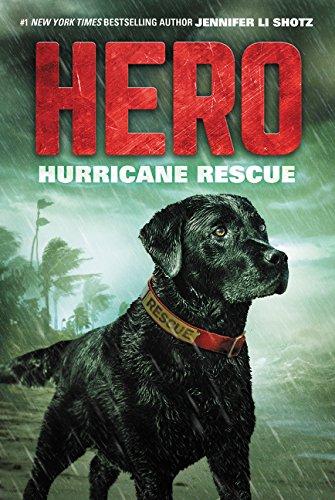 Hero: Hurricane Rescue PDF