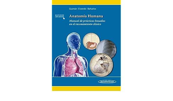 Amazon.com: Anatomía humana / Human Anatomy: Manual de prácticas ...