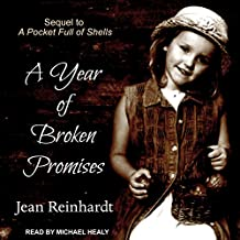 A Year of Broken Promises: An Irish Family Saga, Book 2