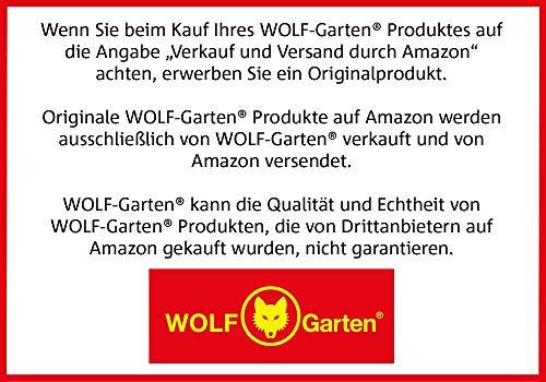 WOLF Garten 71AAA037650 Rasenkantenschneider Multi-Star RB Holzstiel 170cm Set
