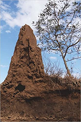 Termite Mound In Australia Journal 150 Page Lined Notebook Diary Image Cool 9781536989069 Amazon Com Books