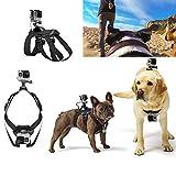 Best GoPro for dog - LOKE Gopro Dog Harness Mount for Camera, Pet Review
