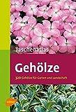 Taschenatlas Gehölze: 320 Gehölze für Garten und Landschaft (Taschenatlanten)
