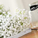 Nubry-10pcs-Baby-BreathGypsophila-Artificial-Fake-Flowers-Bouquets-Baby-Breath-Bulk-Flowers-in-White-for-Wedding-Crown-Home-Party-Garden-Decoration