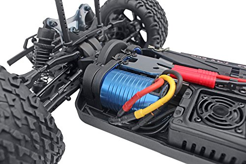 Blackout XTE Pro 1/10 Scale Electric Monster Truck by Redcat Racing (Image #8)