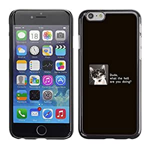 Ihec Tech Dude Cat - Funny / Funda Case back Cover guard / for Apple Iphone 6 Plus 5.5