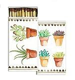 HomArt Watercolor Succulents Match Box