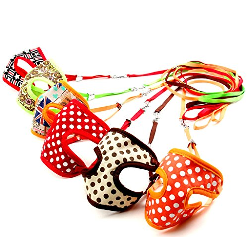 Multi Colored Non Pull Harnesses Multiple Patterns