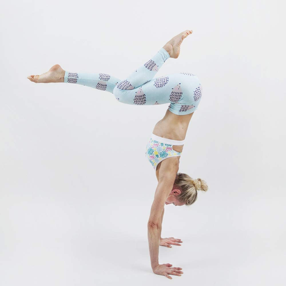 iLUGU Womens Hedgehog Print Trouser Socks Sports Pants Gym Yoga Running Fitness Leggings Yoga Workout Work Out