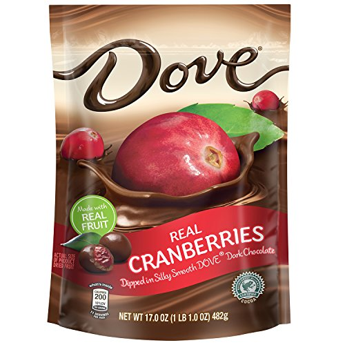 DOVE Fruit Dark Chocolate With Real Cranberries 17-Ounce Pouch