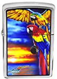 Zippo Parrots by Mazzi Custom Lighter New Release