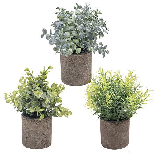 The Bloom Times Set of 3 Small Potted Artificial Plants Plastic Fake Greenery Boxwood Rosemary Eucalyptus Faux Plants in Pots Topiary Shrubs for Home Office Farmhouse Bathroom Tabletop Indoor Decor