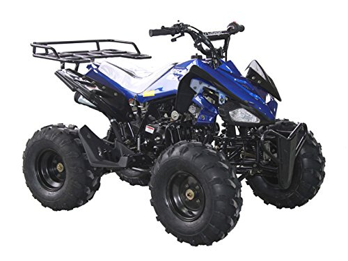 DONGFANG 125cc ATV SEMI-AUTO Four Wheelers 4 Stroke Engine 8